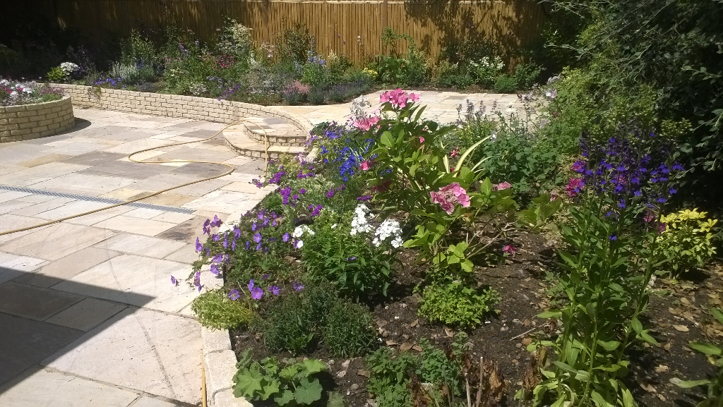 flower beds in residential garden