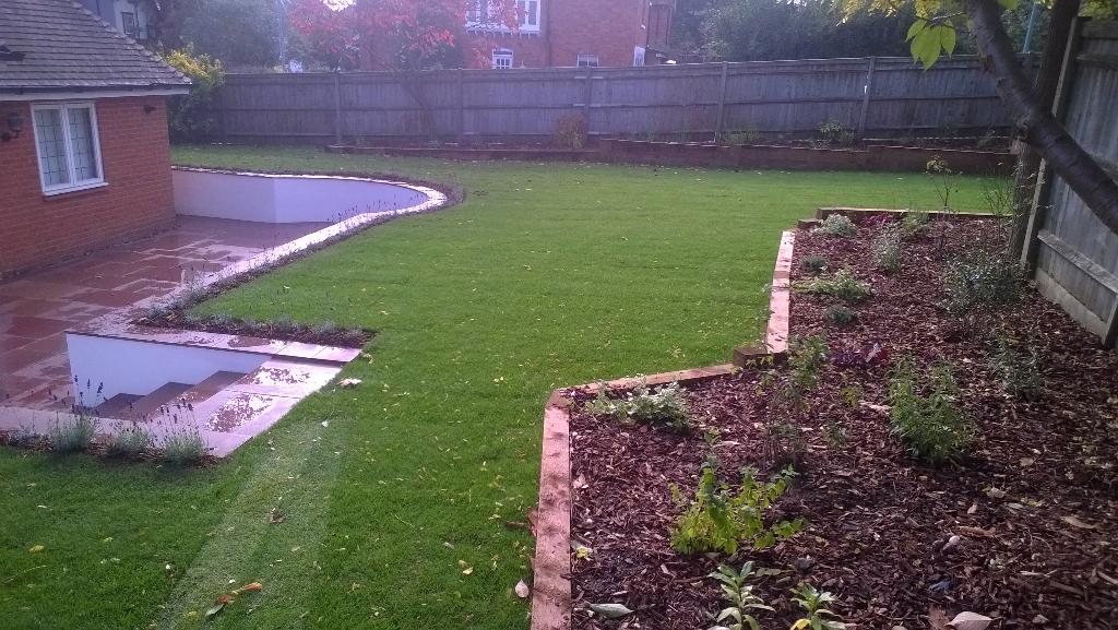 modern garden with fresh lawn