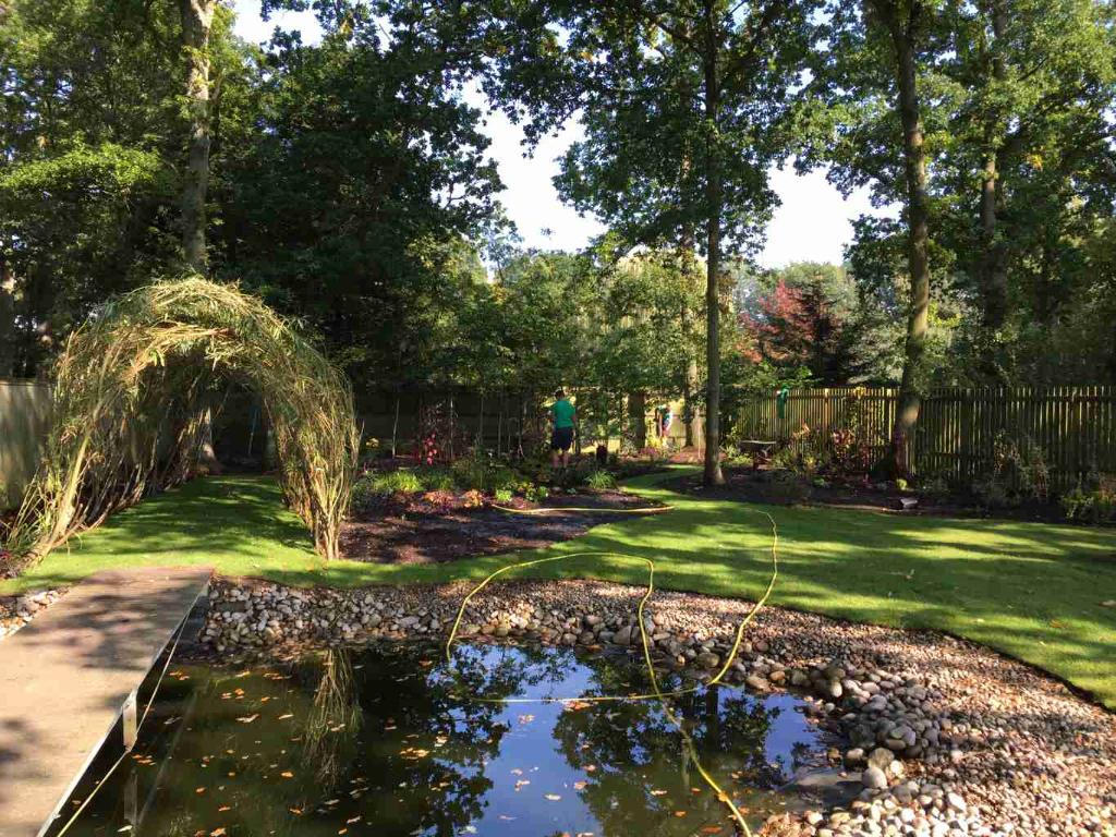 Woodland garden in Wooburn Green