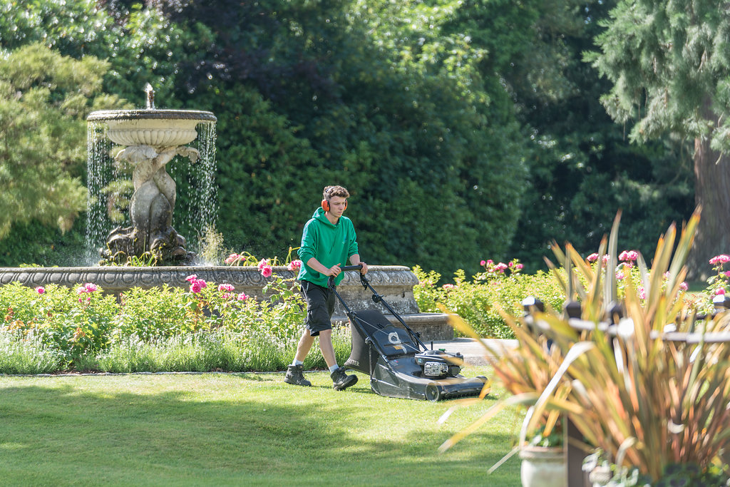 maintaining a landscaped garden