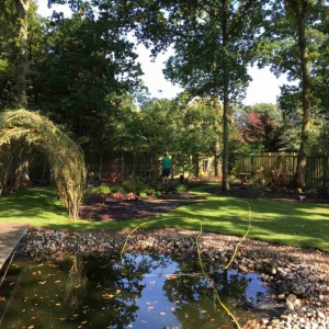 pond and woodland area in garden