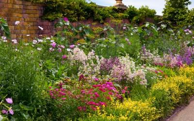 Gardening Tips For June