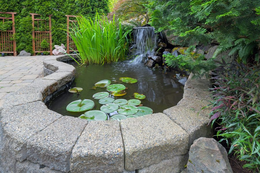 small water feature pond