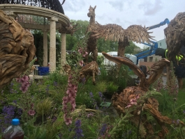 left view of chelsea flower show