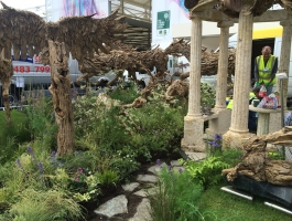 right view of Chelsea flower show