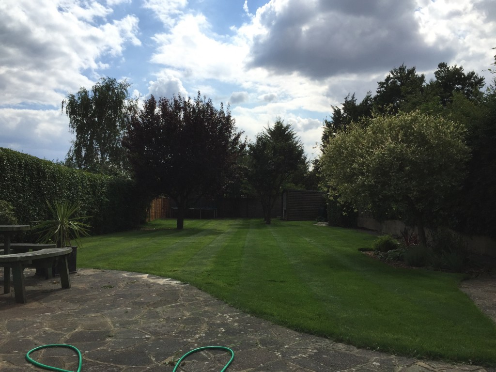 large garden with maintained lawn