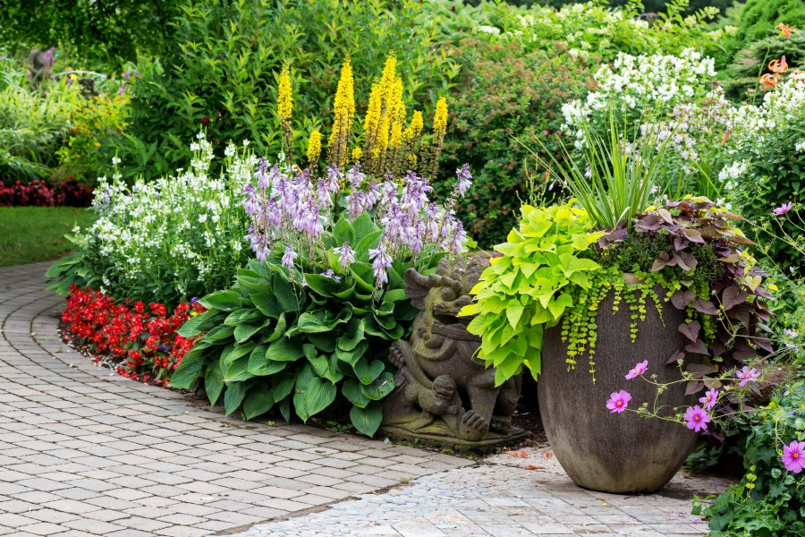 Summer Pot with flowers