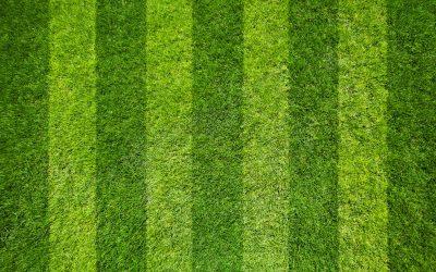 tramlines in grass
