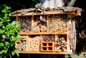 Why Every Garden Needs a Bug Hotel