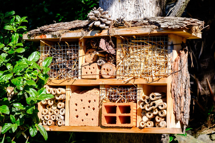Why Every Garden Needs a Bug Hotel - Thames Valley Landscapes