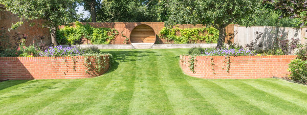 new lawns and lawn maintenance