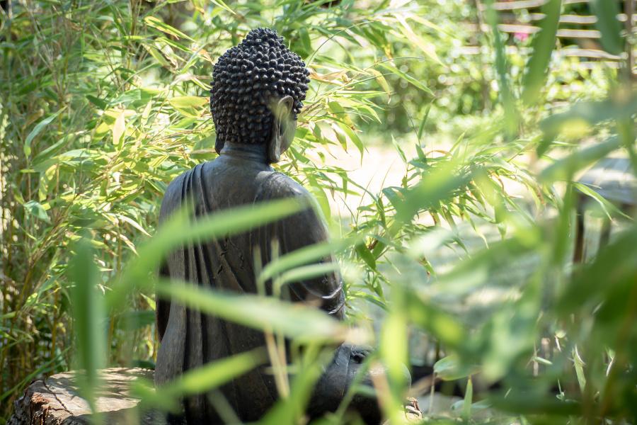 buddah statue in zen garden