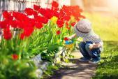 Great Ideas To Get Kids Gardening During Lockdown