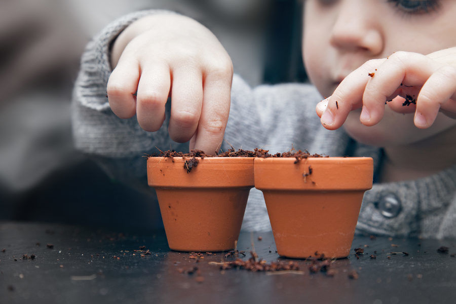 young child planting seeds