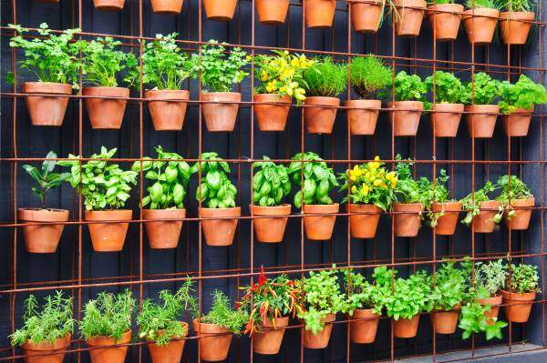 flower pots hung on wire mesh