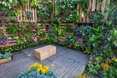 The Rise of Vertical Gardening