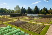 Growing Their Own At Oakley Court Hotel